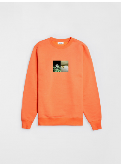 Sweatshirt Rosin Orange