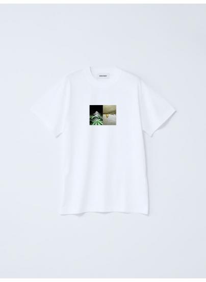 Camiseta Rosin Blanca