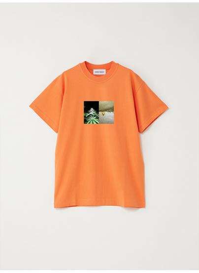 Camiseta Rosin Naranja