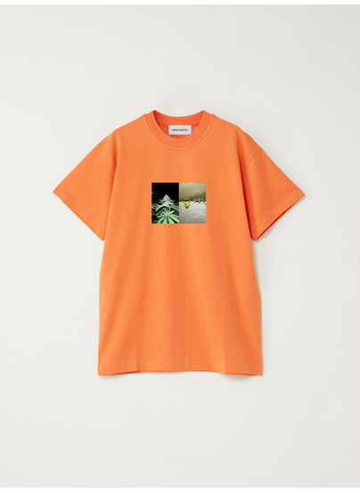 Tshirt Rosin Orange